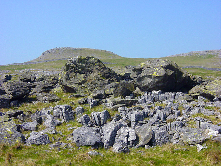 The term erratics fits the bill