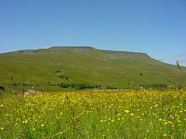 Wild Boar Fell as seen from Cumpston Hill