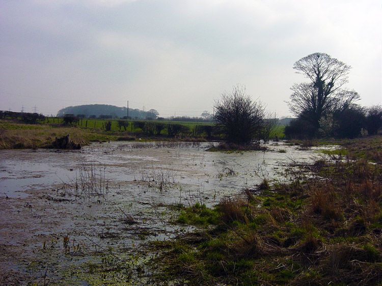 Waterlogged field at Beverley Parks