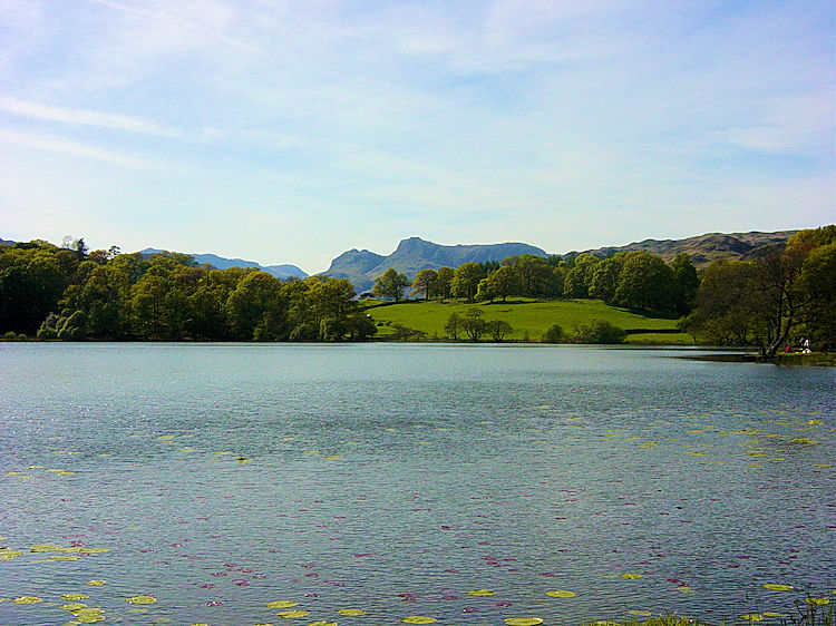 Loughrigg Tarn is in a wonderful setting