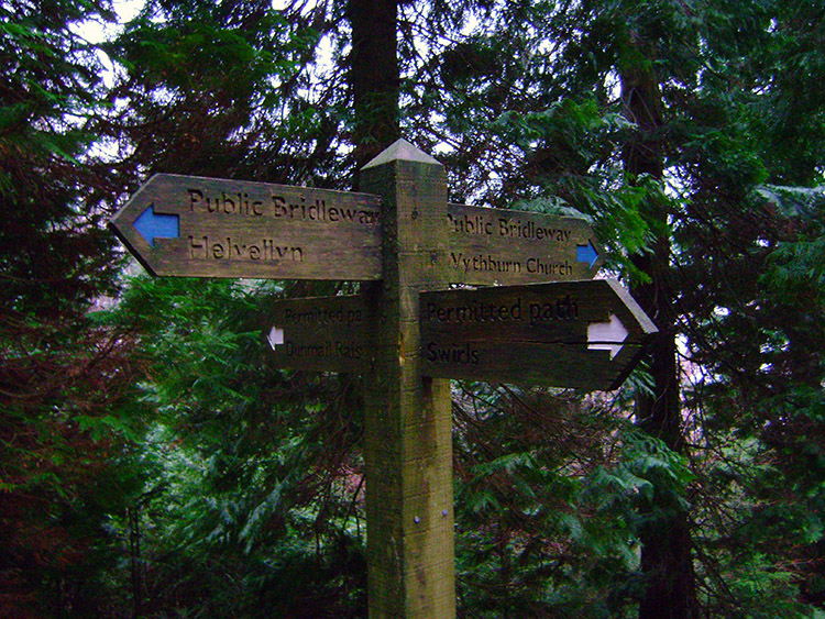 Forest crossroads near Wythburn