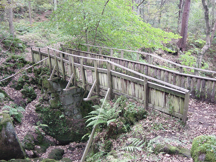 Rickety wooden bridge in Hebers Ghyll Woods