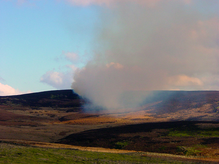 Controlled burning on Denton Moor