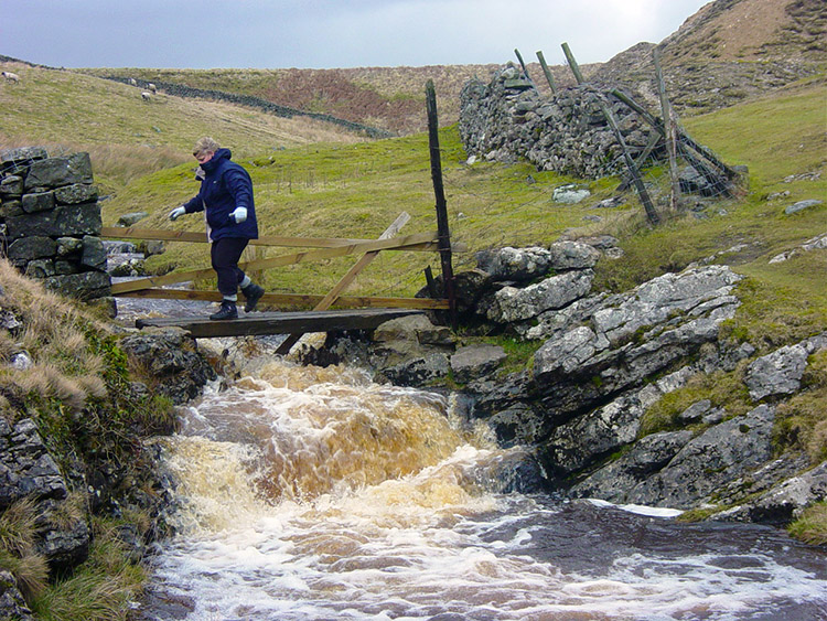 Carefully crossing the beck