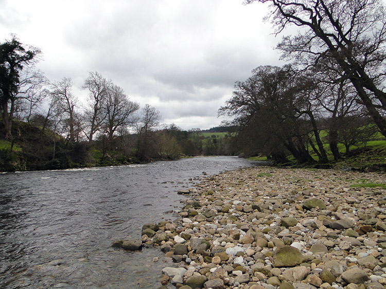 The River Ure near Nutwith Cote