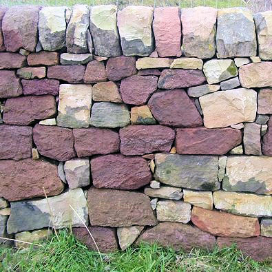A very fine example of Drystone walling near Foxt
