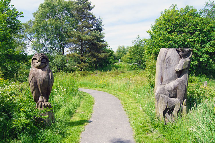 Wood carvings at Sutton Bank