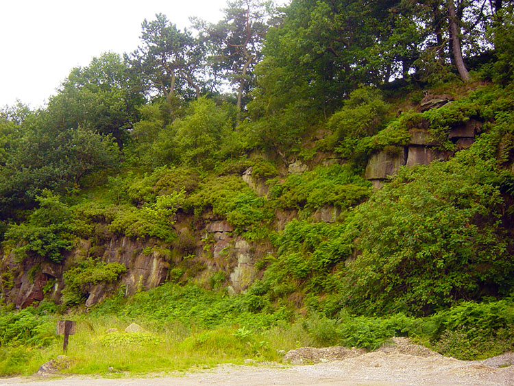 Greenery amid rocky outcrops in Crimsworth Dean