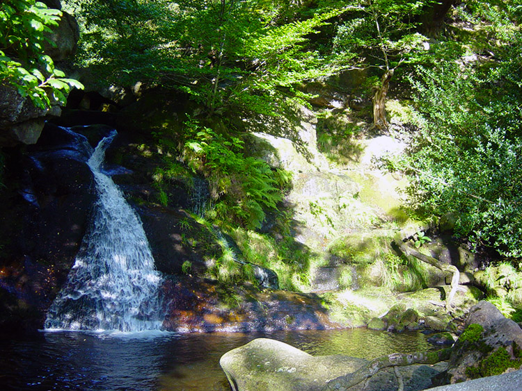 Dicken Dyke Waterfall