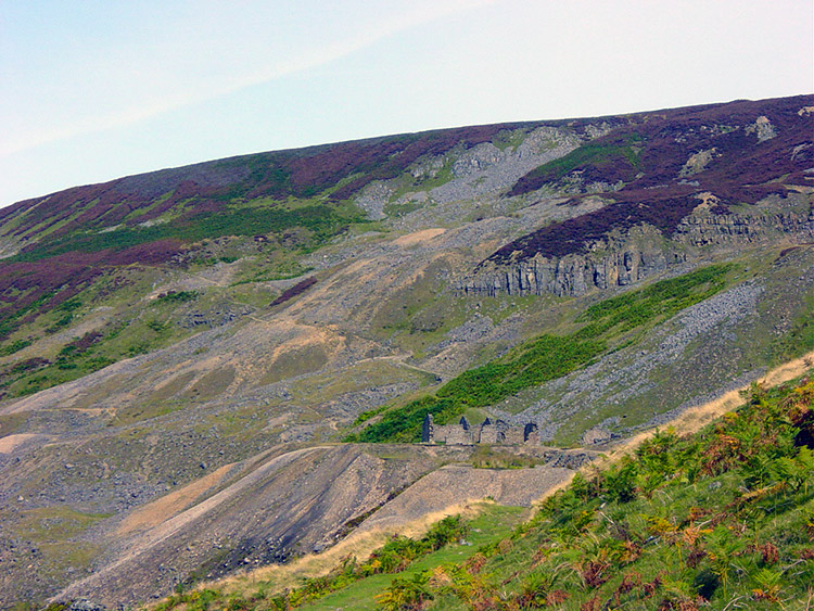 Scarred ground on the east bank of Gunnerside Gill