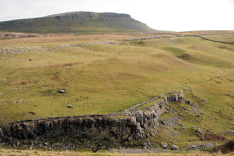 View to Pen-y-ghent from Horton Scar