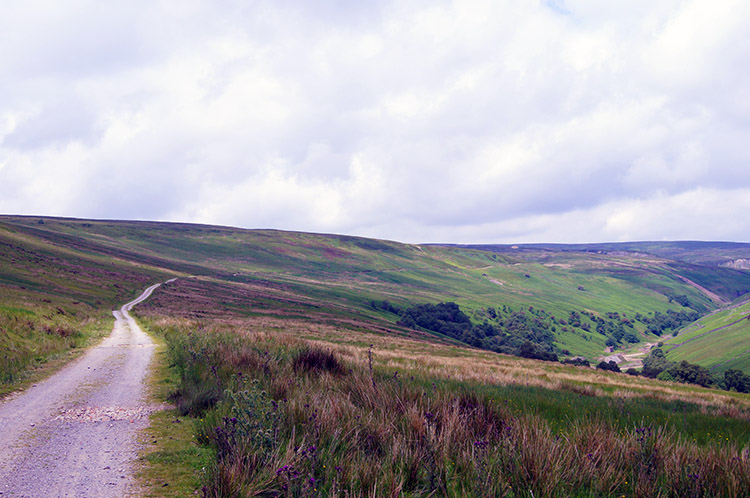 The track to Botcher Gill Gate