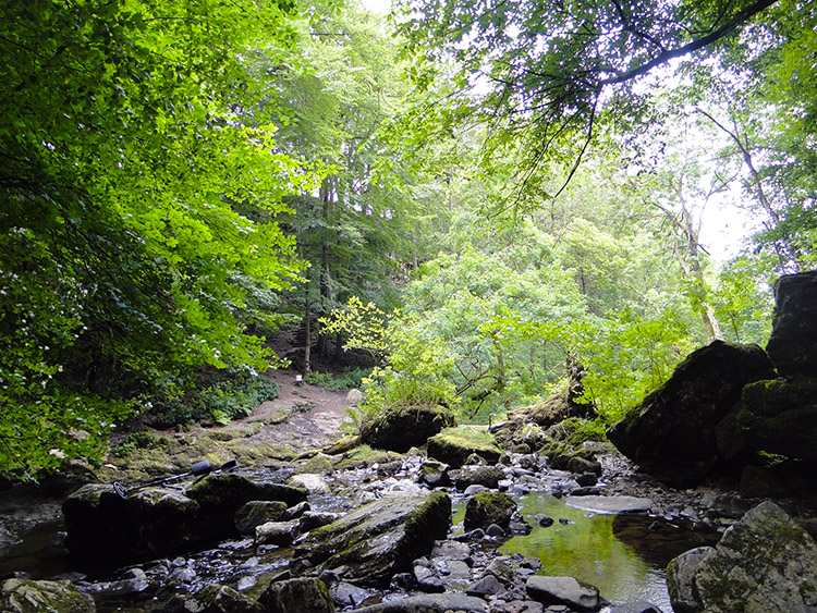 The hidden dell of Catrigg Force