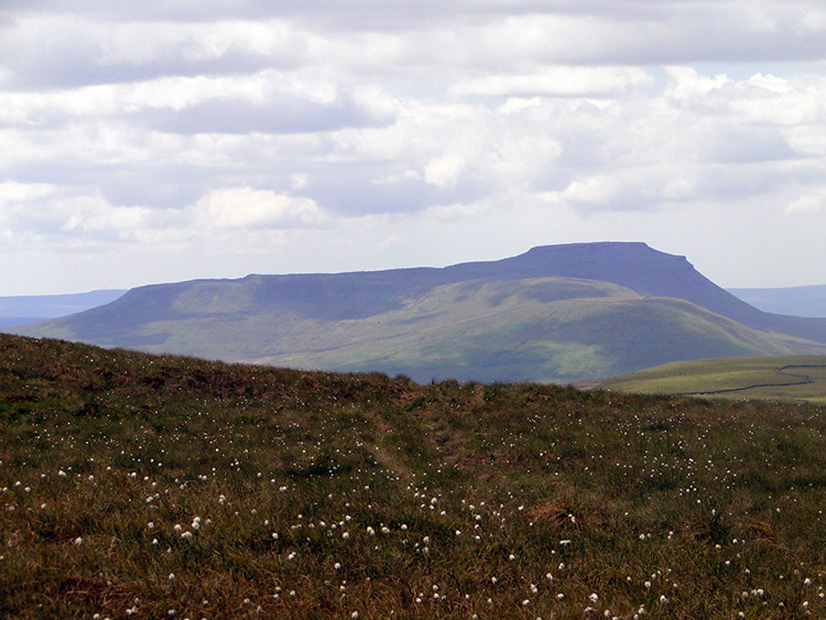Ingleborough viewed from Dodd Fell