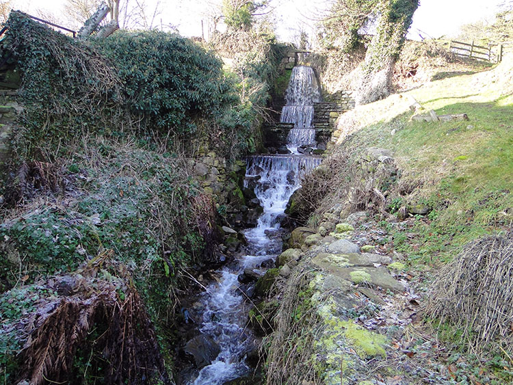 A stream cascading through gardens in Coverham