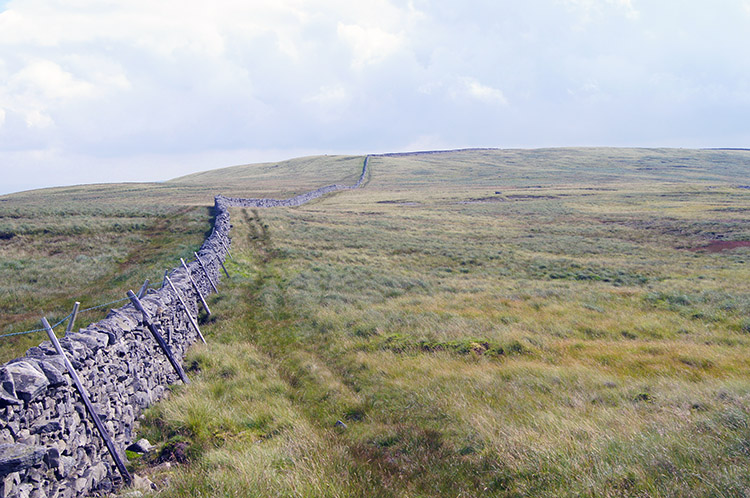 Wall linking Crag Hill and Great Coum