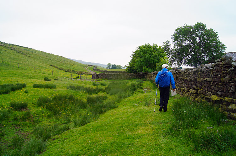 Heading from Whitfield Gill to Low Straights Lane