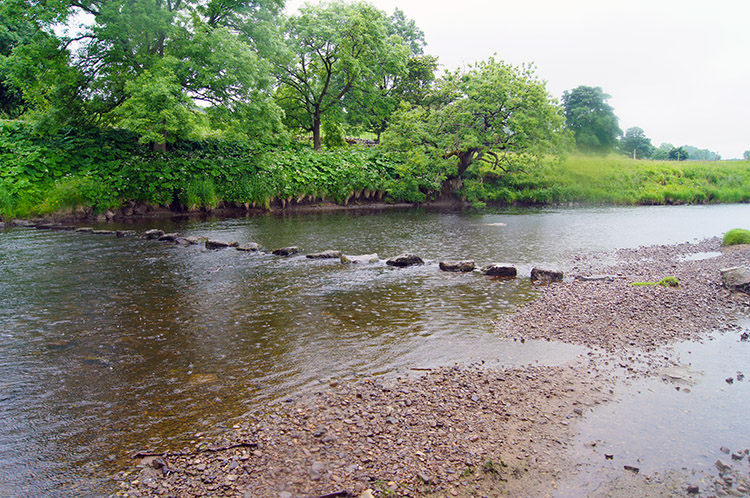 The stepping stones over the Ure near Nipe Lane