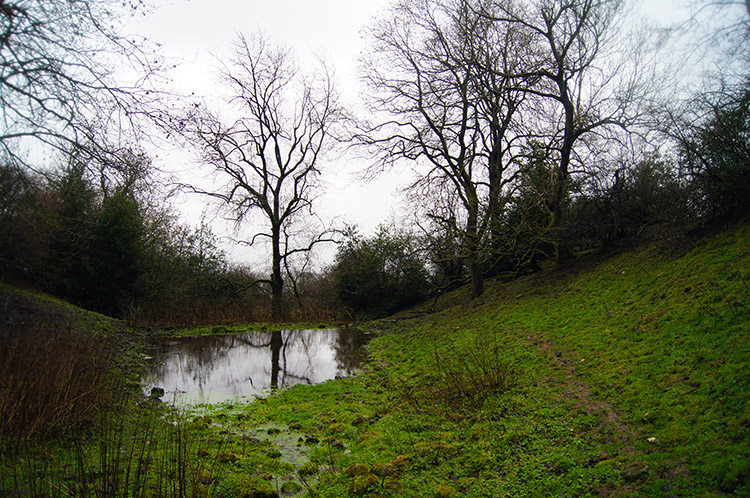 Pond near Quarry Hill