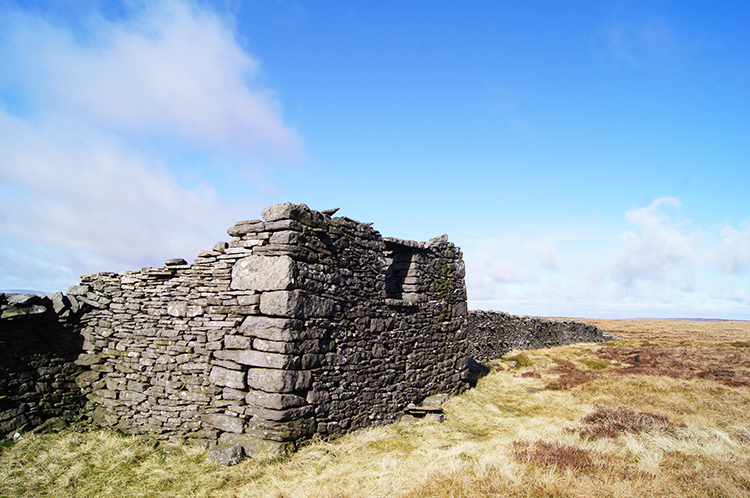 Sheep shelter on Birks Fell
