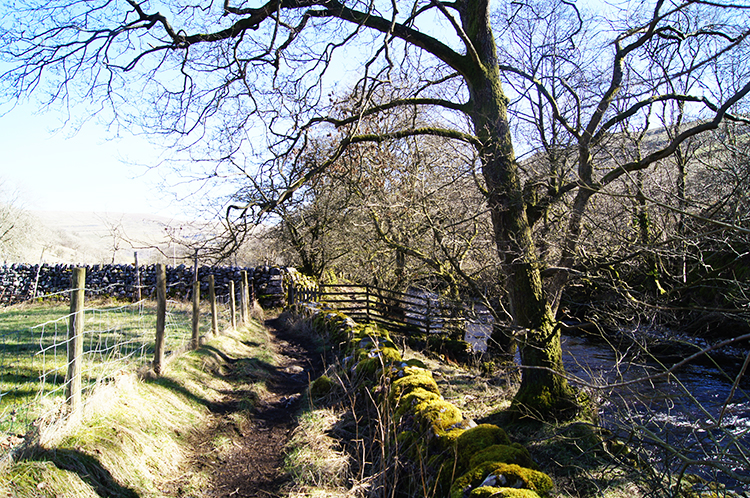 The Dales Way path through Langstrothdale