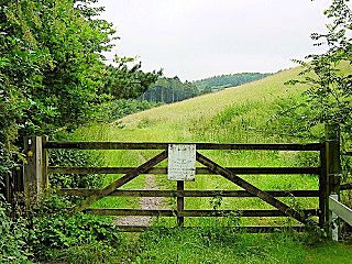 The gateway to Welton Dale