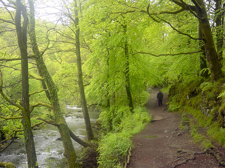 Path from Skelwith Bridge to Skelwith Force