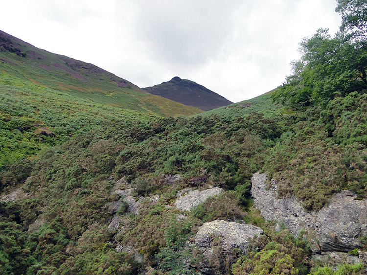 Causey Pike as seen from Stonecroft