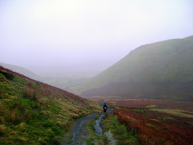 Beginning the ascent of Bowscale Fell