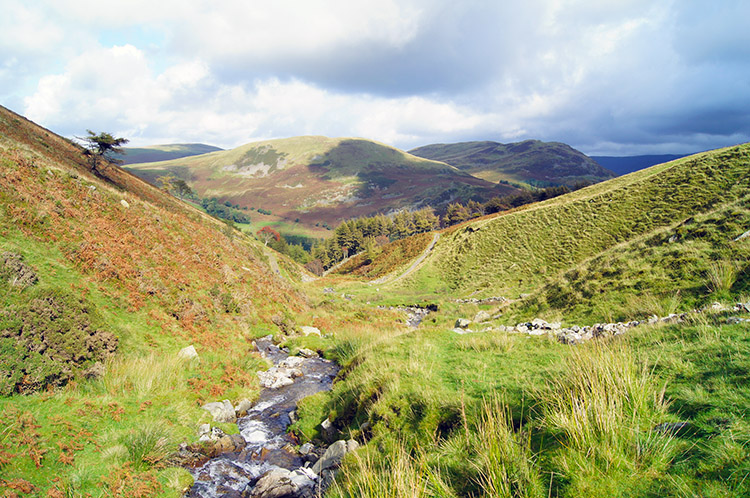 Looking down Holme Beck to Fellbarrow and Low Fell