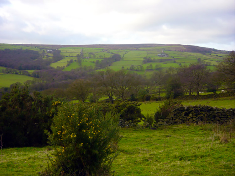 View to Farnley Moor from Sword Point