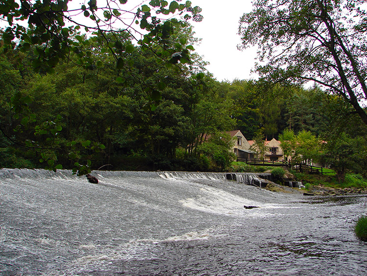 The weir on the River Nidd at Scotton Mill