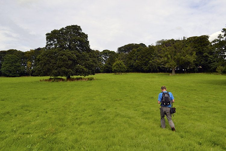 Crossing fields towards Stainley House