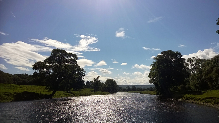 The shimmering Wharfe