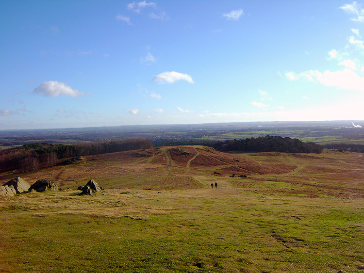 Looking across Bradgate Country Park towards Leicester