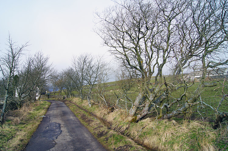Walking from the moor toward Dale Cottage