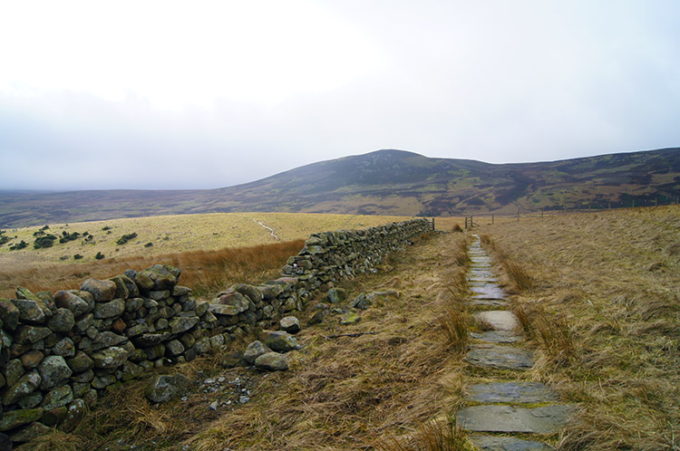 Following the Pennine Way at Bracken Rigg