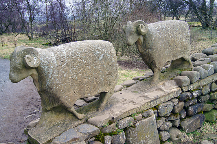 Sheep Sculptures at Low Force