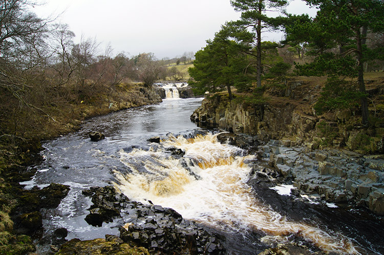 Looking back to Low Force