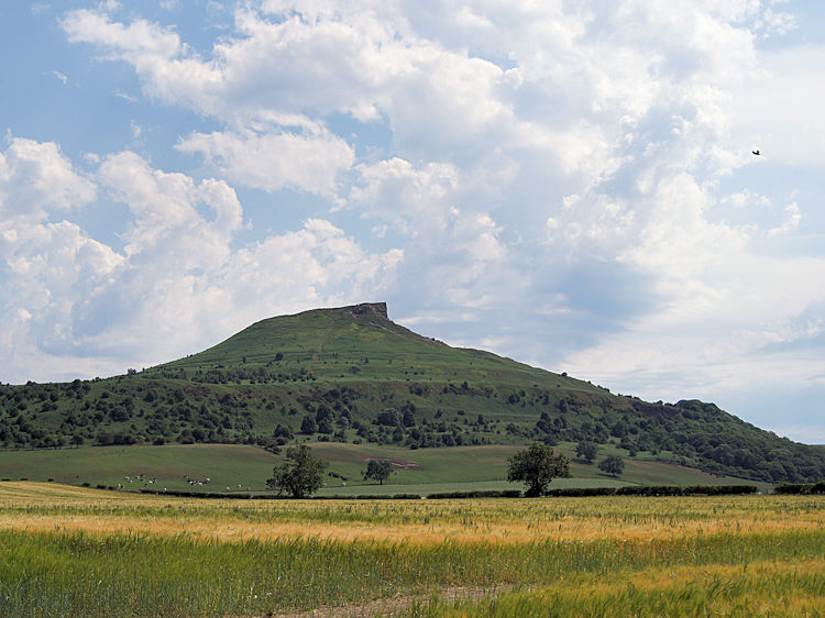 A final look back to Roseberry Topping