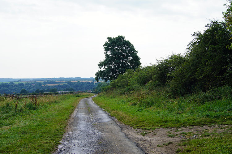 The track from Levisham Moor into the village