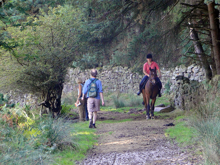 Meeting a rider on the bridleway
