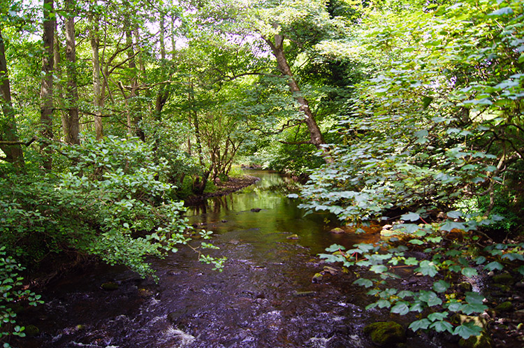 River Burn near Shaws Bridge
