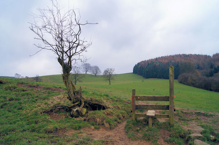 Isolated stile on the Limestone Way