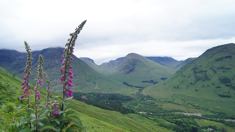 View to Glen Coe