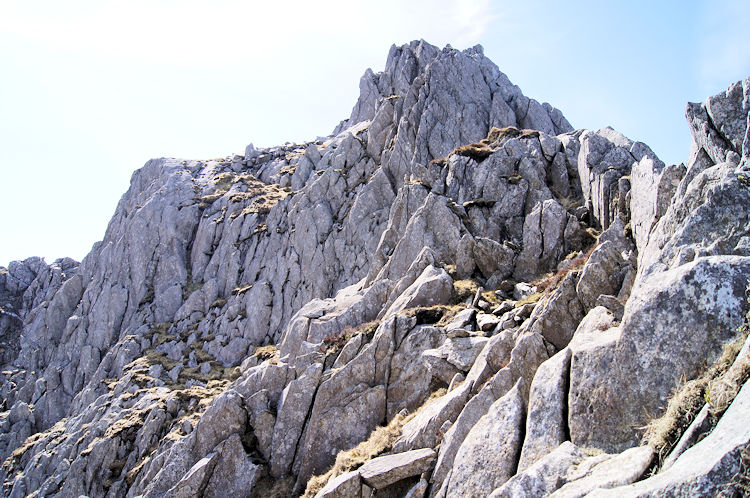 The higher reaches of Tryfan are an exciting place...