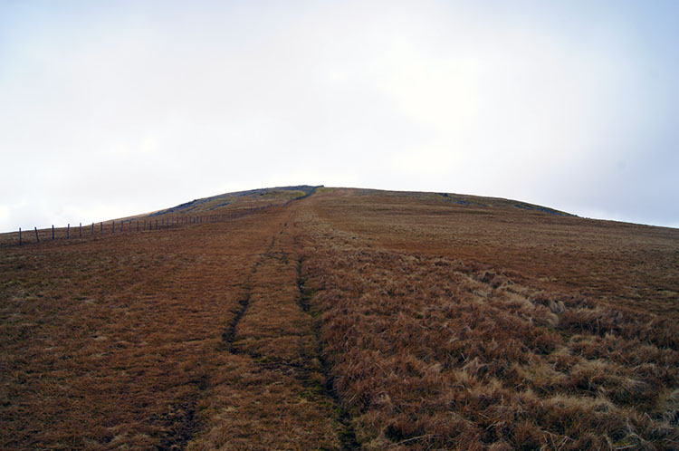 The grassy slope to Foel-fras
