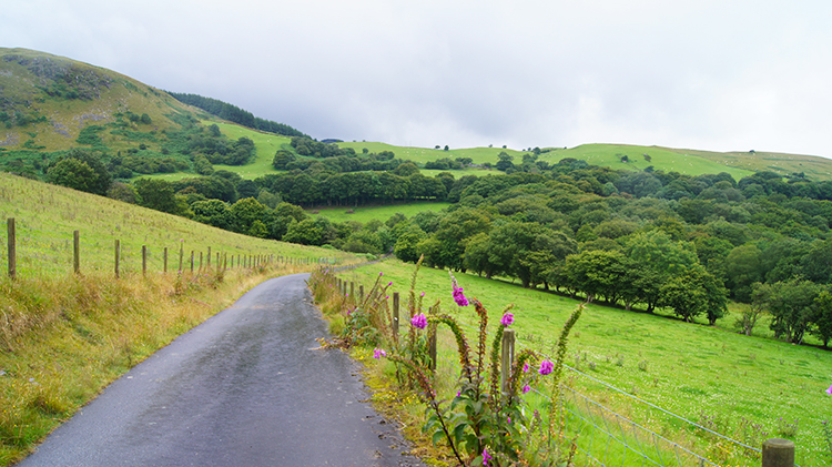 Following the lane from Troed-y-rhiw