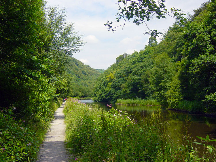 Lush green canalside near Hebden Bridge
