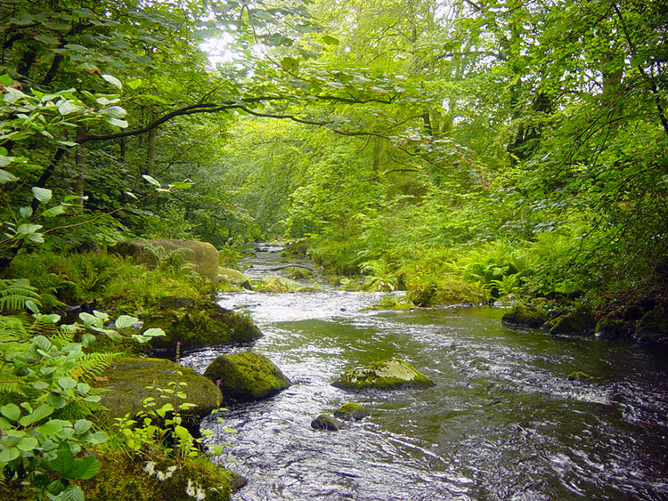 Hebden Water is a prominent feature of the walk